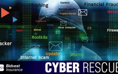 Bidvest Insurance to the Rescue on Cyber Crime